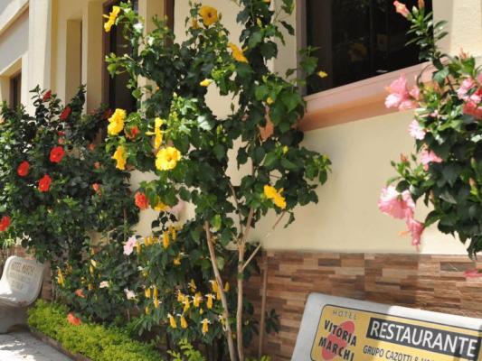 Hotel Vitória Marchi